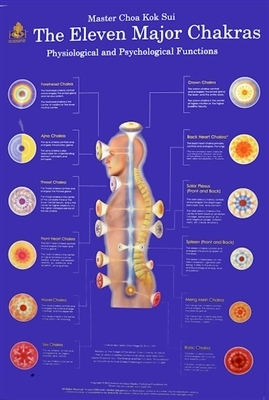 11 Major Chakras - Large Poster